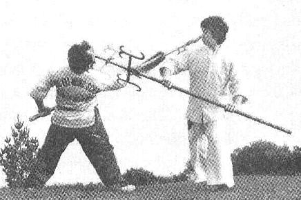 Grandmaster Wong defends an attack from a Spear